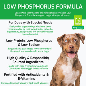 Veterinarian Formulated Solutions low phosphorus dog food for kidney care features and benefits.