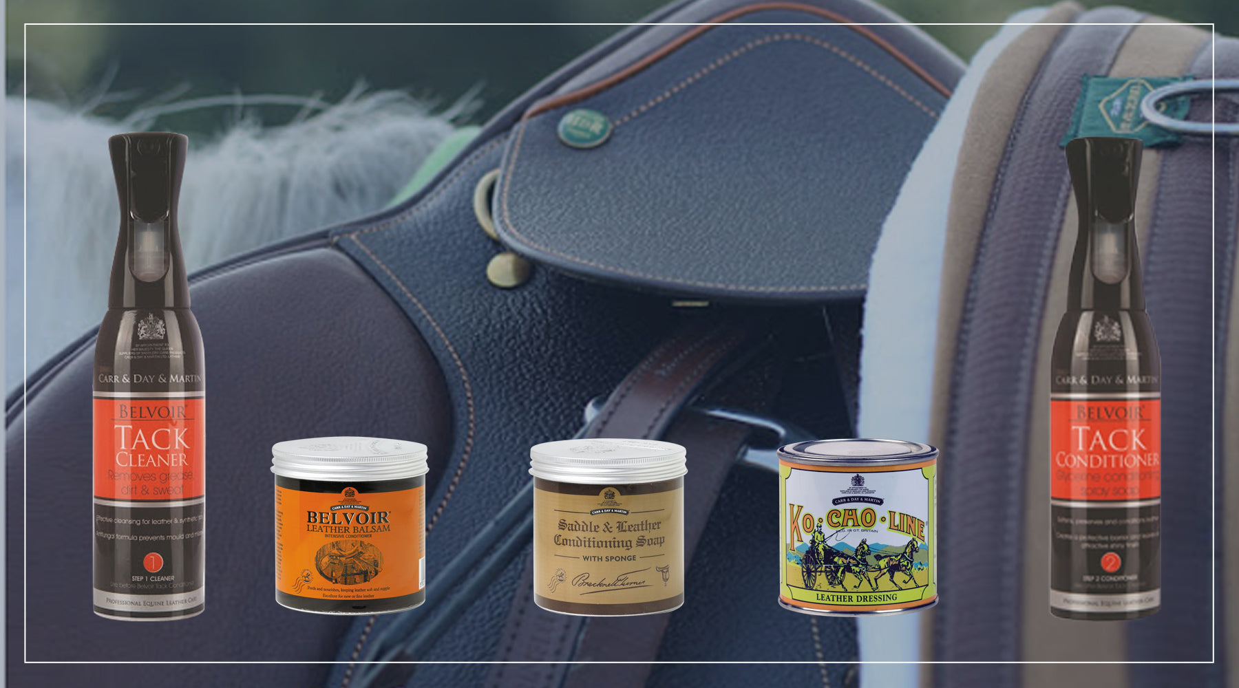 Saddles and Bridles: Leather Care 101