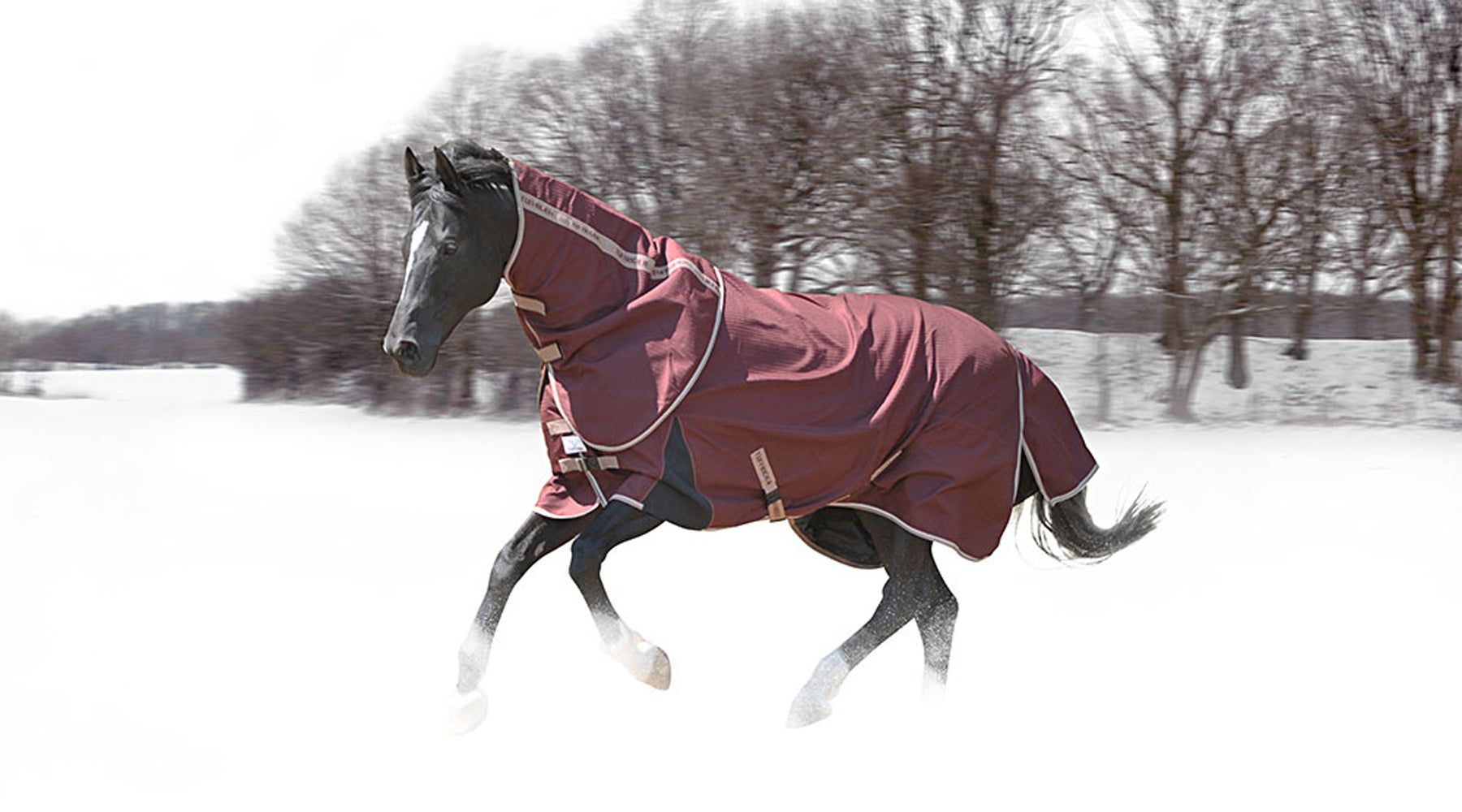 Grab Your Helmet, Long Socks, Winter Boots and Gloves! We're Going to the Barn!