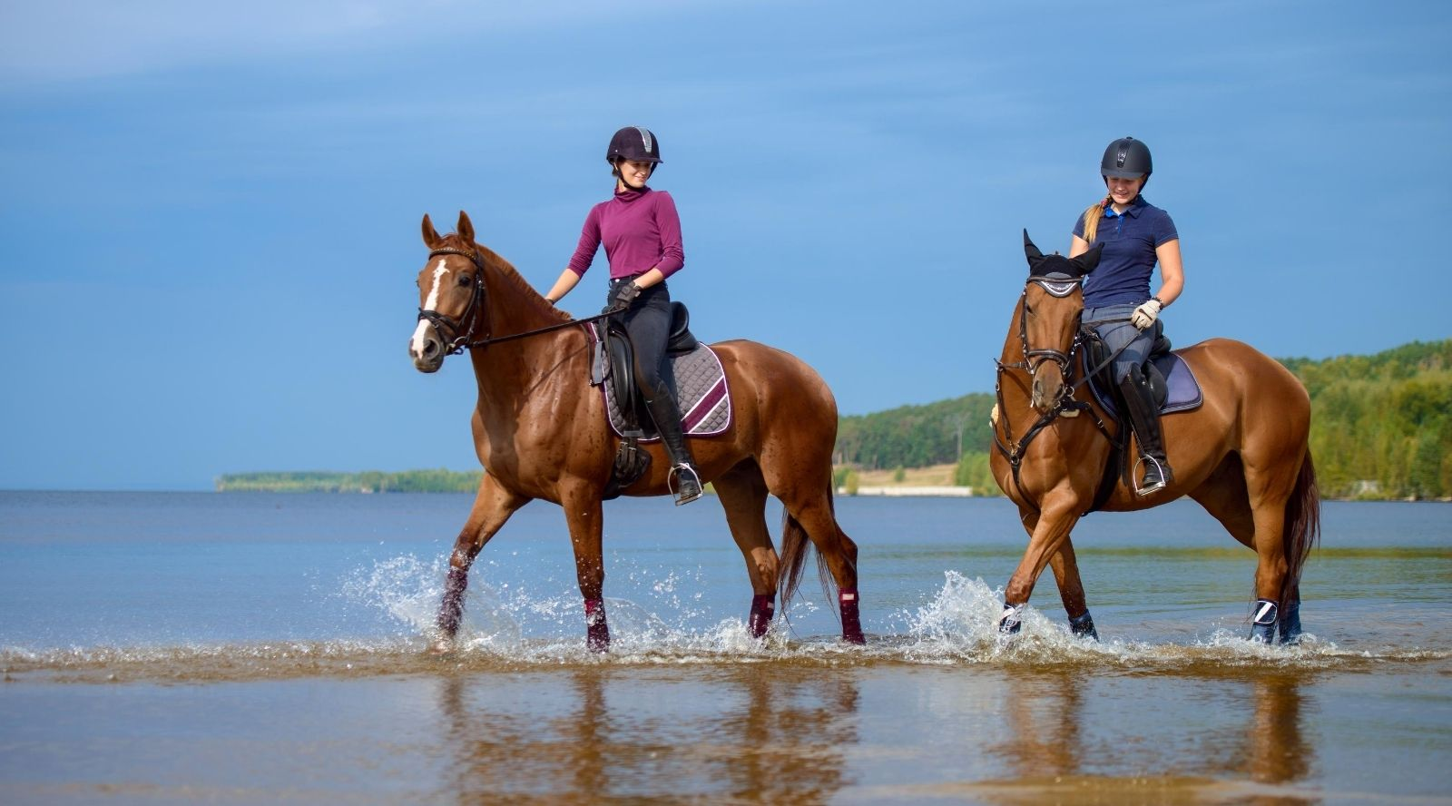 How to Spend the Last Few Weeks of Summer  With Your Horse