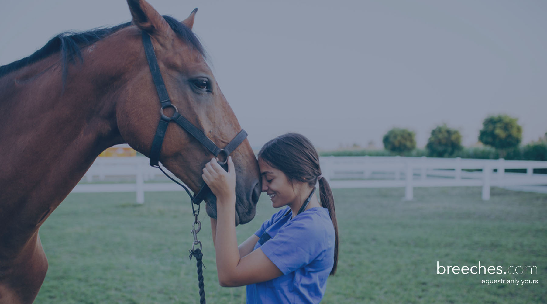 How riders can protect themselves from COVID-19 and support horse immune system