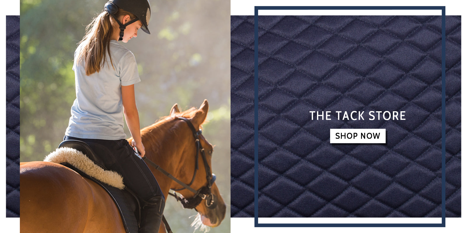 Buy Breeches, Riding Boots, Horse Saddles Online - Breeches