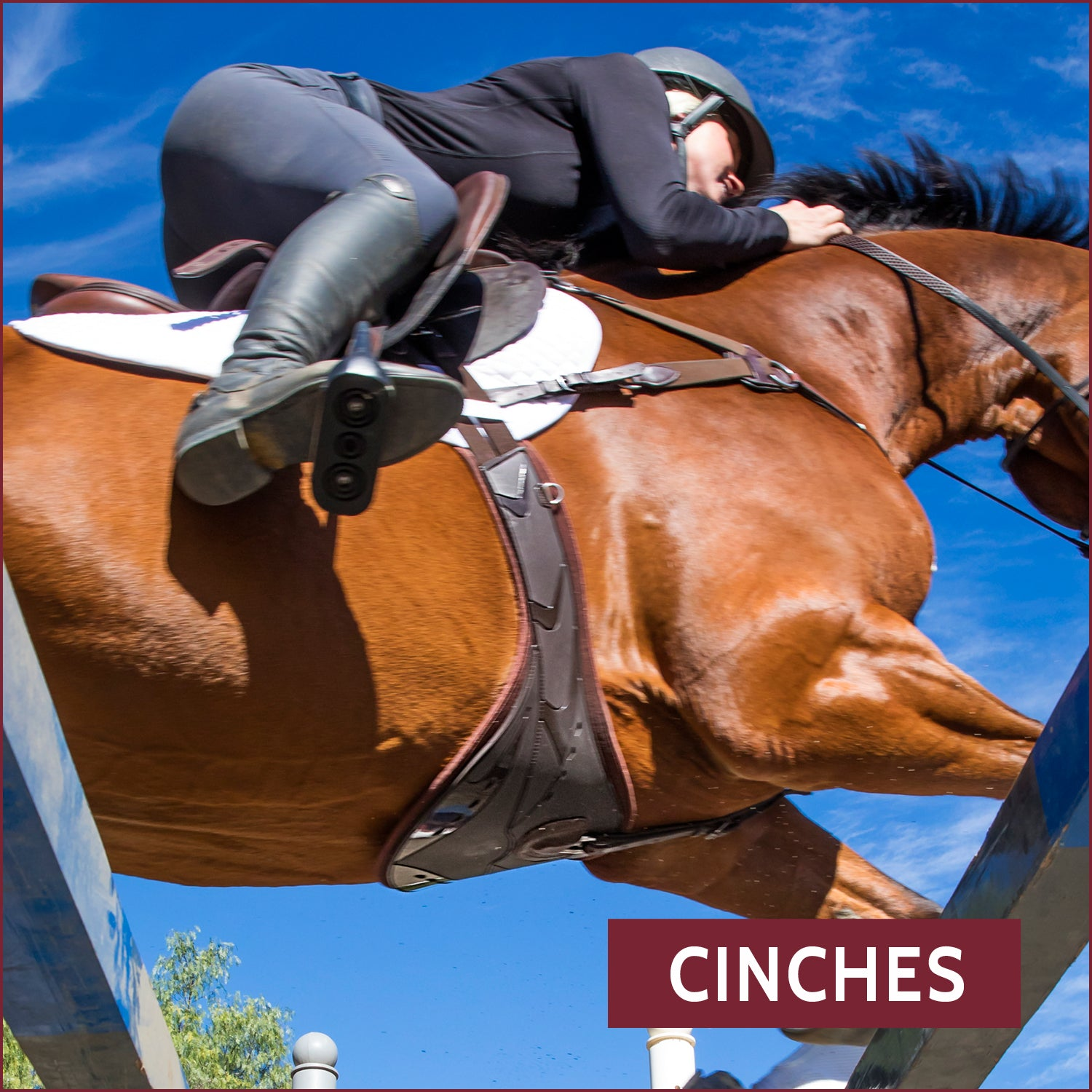 Cinches