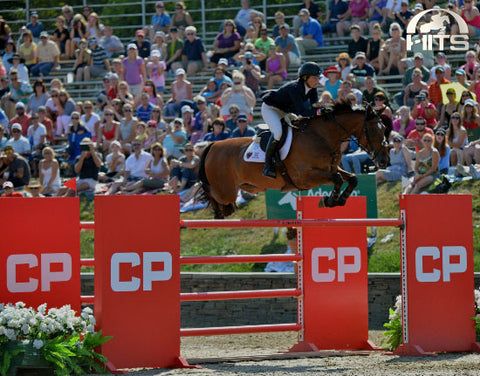 Hits - Equestrian Sports Horse Riding Events