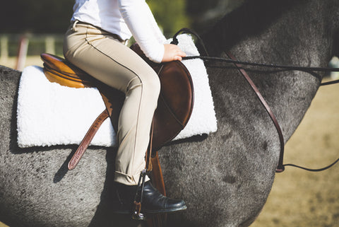 English rider wearing jodhpur breeches