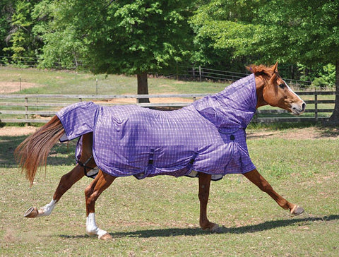 horse waterproof blanket for horse care