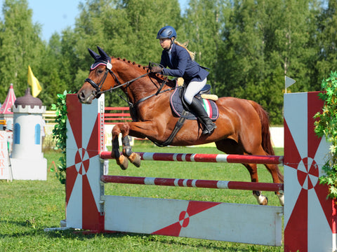 Equestrian Show Jumping in Riding Breeches