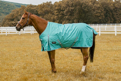 """Winter Horse Turnout Blanket -1200D 69/""""to 84/"""" Snuggit Fit HUNTER GREEN"""