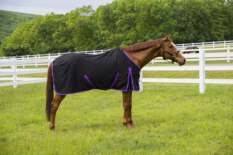 Tuffrider Kozy Komfort Stable Sheet - Breeches.com