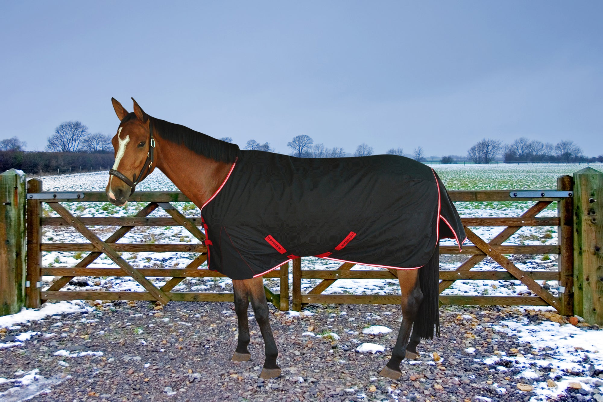 TuffRider Optimum 1680D Outer Armour Medium Weight  w/ Thermo Manager Lining Standard Neck  Turnout Blanket - Breeches.com