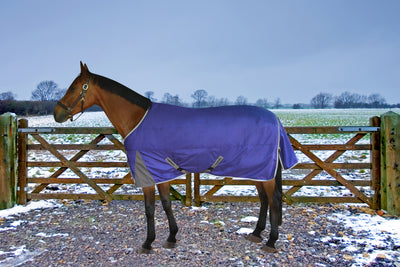 TuffRider Major 1200D Ballistic 220gms Medium Weight Turnout Blanket w Standard Neck - TuffRider - Breeches.com