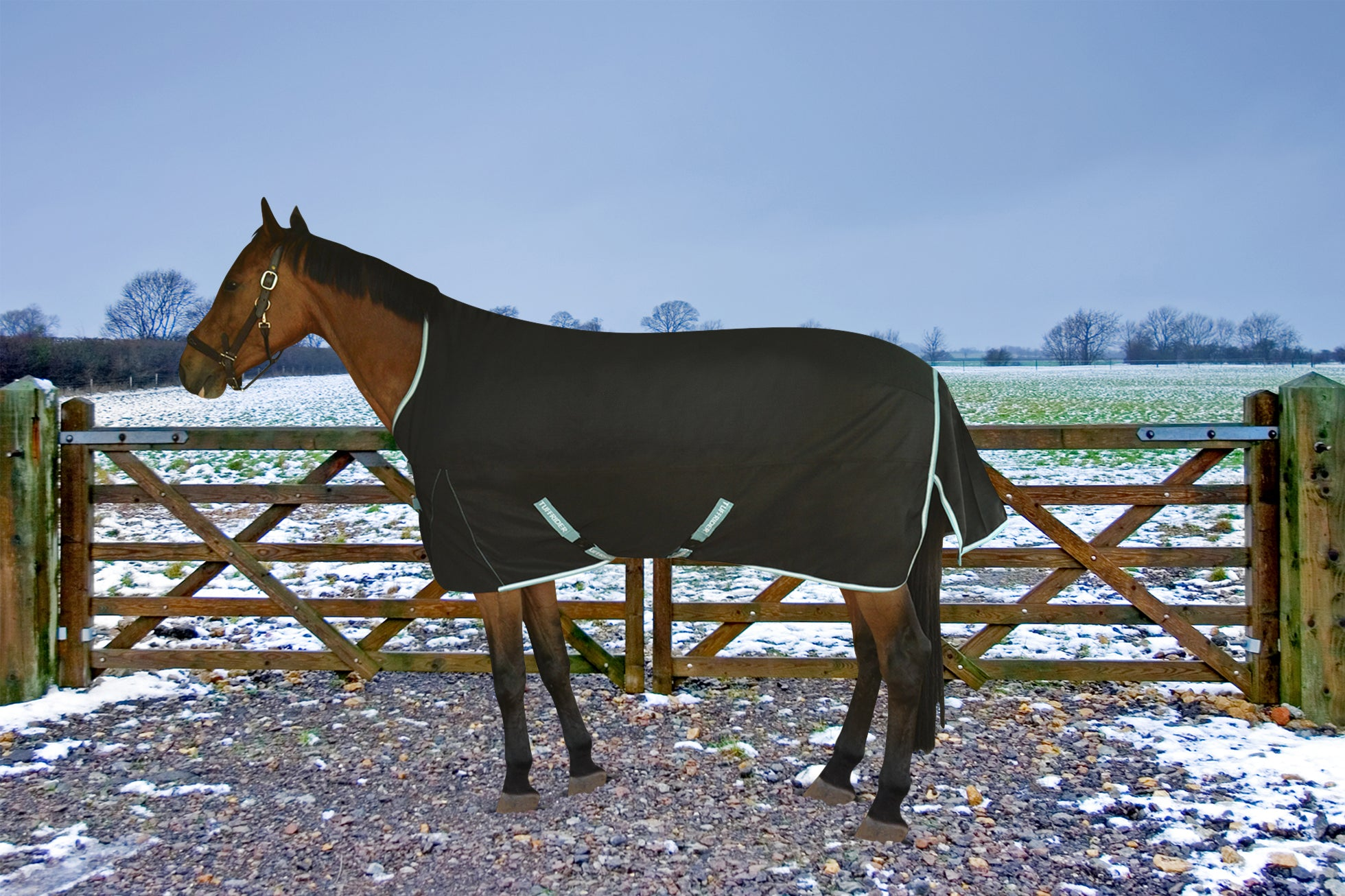 TuffRider Bonum 1200D Ripstop 220gms Medium Weight Turnout Blanket with High Neck - TuffRider - Breeches.com