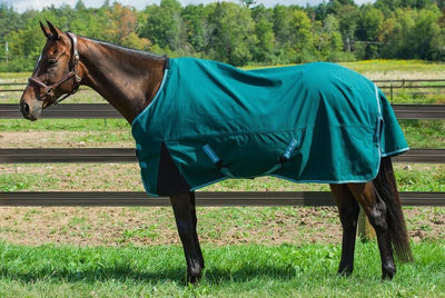 Bonum 1200D Ripstop Coolmax Lightweight 3 Season Turnout Sheet - TuffRider - Breeches.com