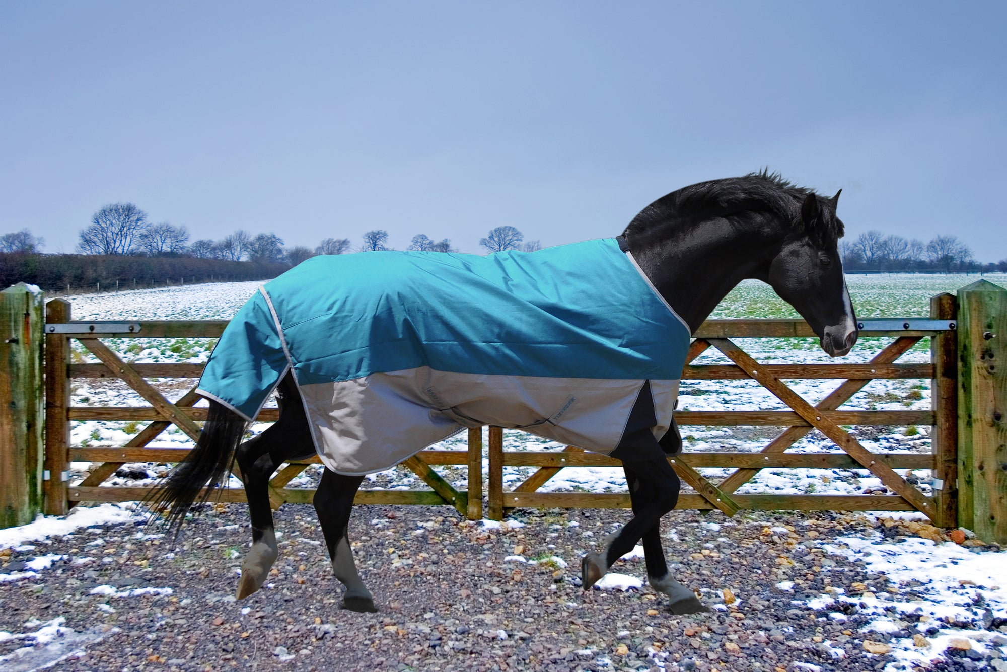 TuffRider Major 1200D Ballistic 220 GMS Turnout Standard Neck Two Tone Turnout Blanket_1