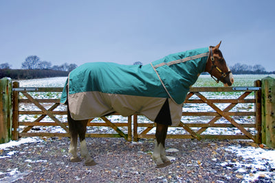 TuffRider Major 1200D Ballistic 220 GMS Detachable Neck Two Tone Turnout Blanket - TuffRider - Breeches.com