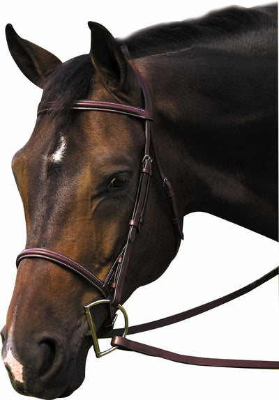 Henri de Rivel Pro Plain Raised Bridle with Laced Reins_6