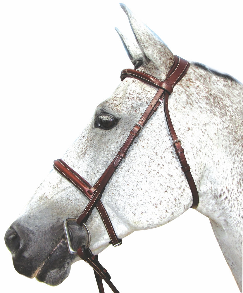 Pro Mono Crown Padded Bridle - Henri de Rivel - Breeches.com