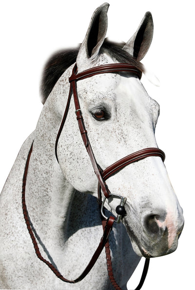 Pro Plain Raised Padded Bridle With Anti Press Head Piece and Matching Reins - Henri de Rivel - Breeches.com