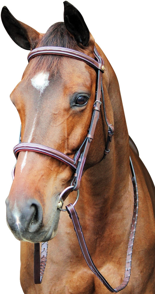 Henri de Rivel Pro Fancy Raised Comfort Crown Padded Bridle With Fancy Raised Reins - Henri de Rivel - Breeches.com