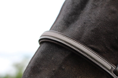 Pro Mono Crown Titanium Bridle - Henri de Rivel - Breeches.com