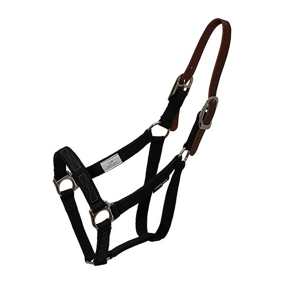 ThinLine Flexible Filly Turnout Halter - Breeches.com