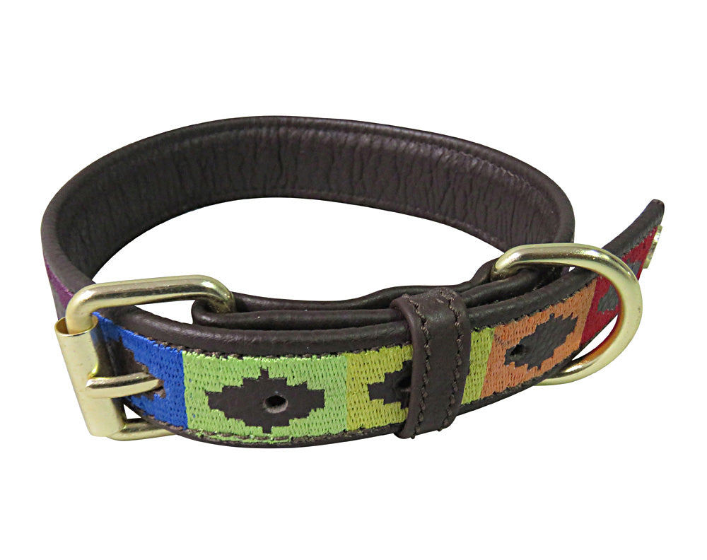 Dog Collar - Leather with Rainbow Dog Collar - Halo - Breeches.com