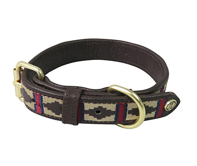 Halo Dog Collar - Leather with Classic Dog Collar