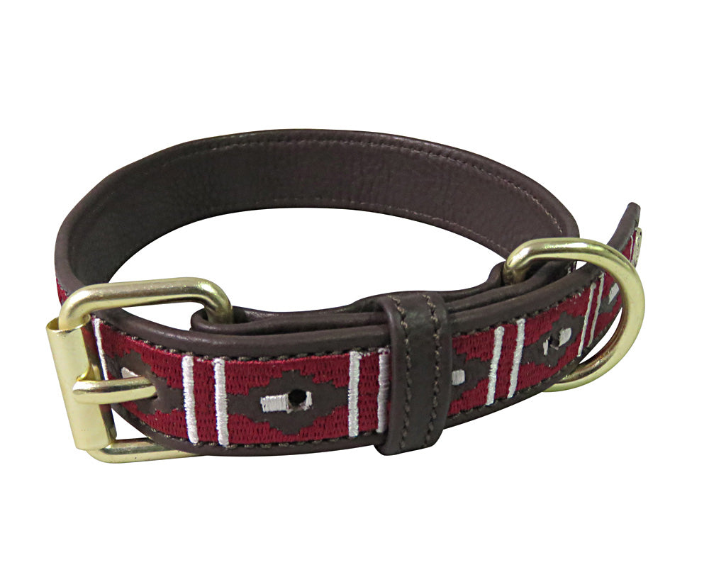 Halo Dog Collar - Leather with Kelly Dog Collar_1