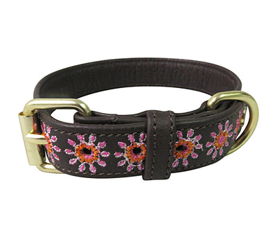 Halo Dog Collar - Leather with Ava Dog Collar - Halo - Breeches.com