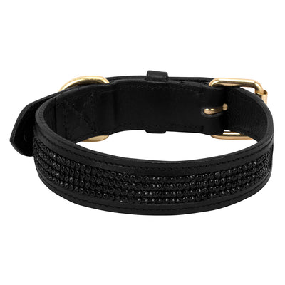 Halo Bling 4 Row Dog Collar - Halo - Breeches.com