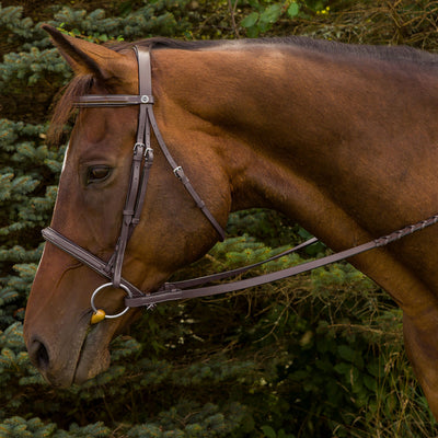Advantage Fancy Raised Padded Bridle with Laced Reins - Henri de Rivel - Breeches.com