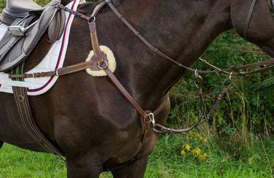 Pro 5 Point Elastic Breastplate Martingale with Running Attachment - Henri de Rivel - Breeches.com