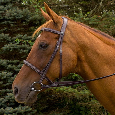 Henri de Rivel Pro Mono Crown Fancy Stitched Padded Bridle - Henri de Rivel - Breeches.com