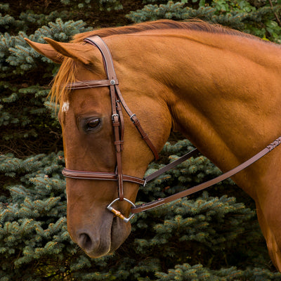 Pro Mono Crown Fancy Stitched Padded Bridle - Henri de Rivel - Breeches.com