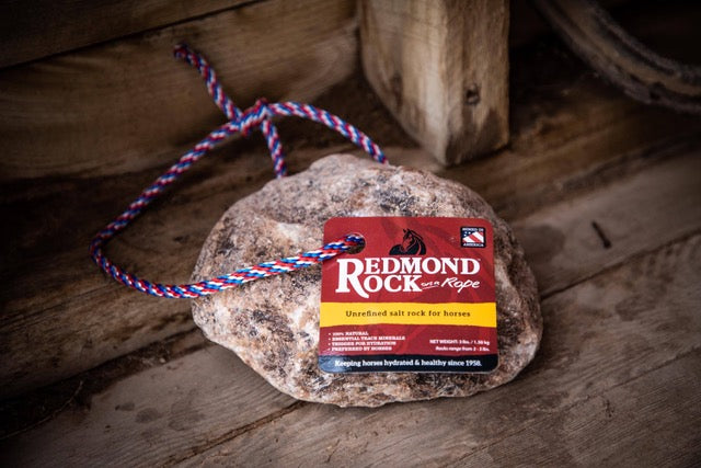 Redmond Rock On a Rope_1
