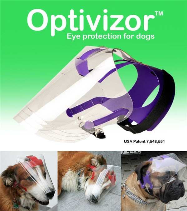 Provizor Products Optivizor Regular Snout - Breeches.com