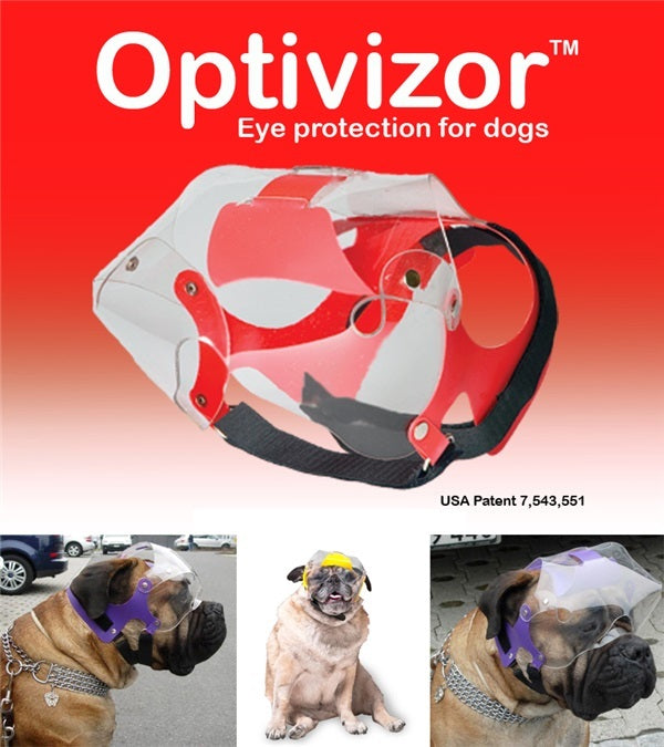 Provizor Products Short Snout Optivizor - Breeches.com