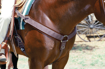 Professional's Choice Neoprene Breast Collar - Breeches.com