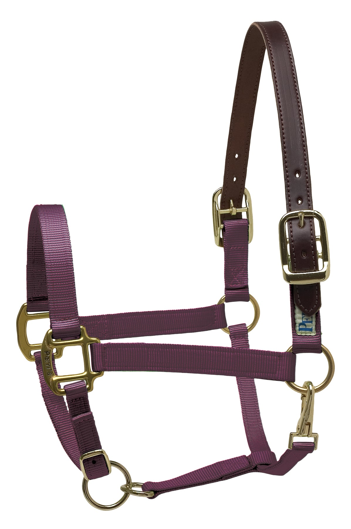 Perri's Leather Safety Halter - Breeches.com
