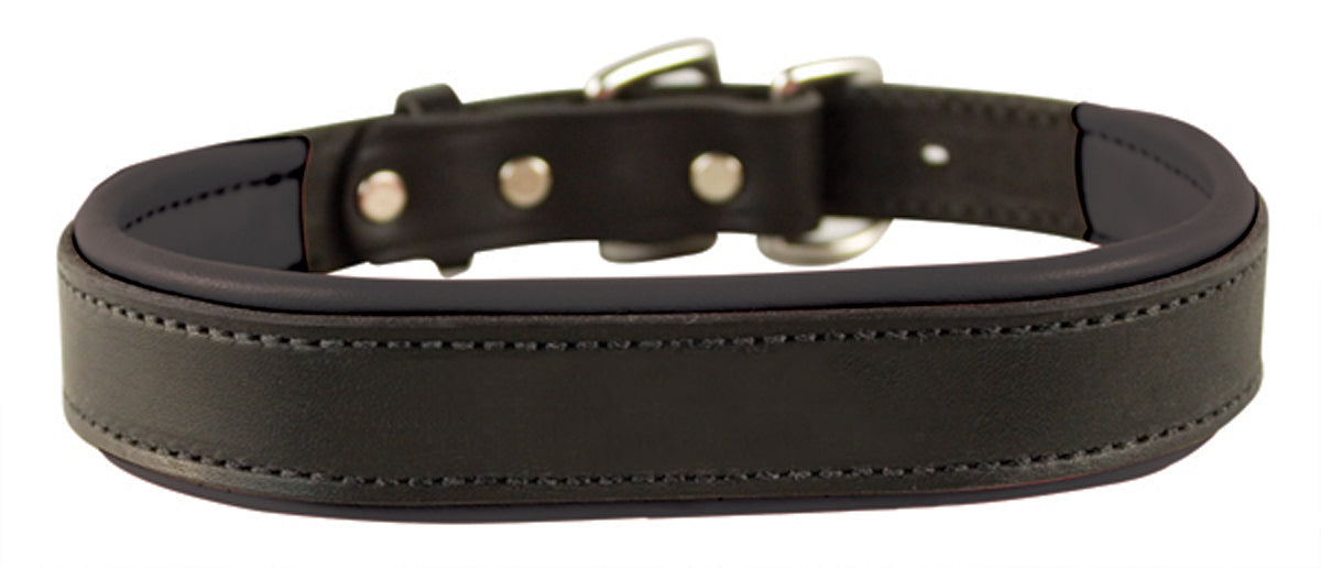 Perri's Leather Padded Leather Dog Collar_1