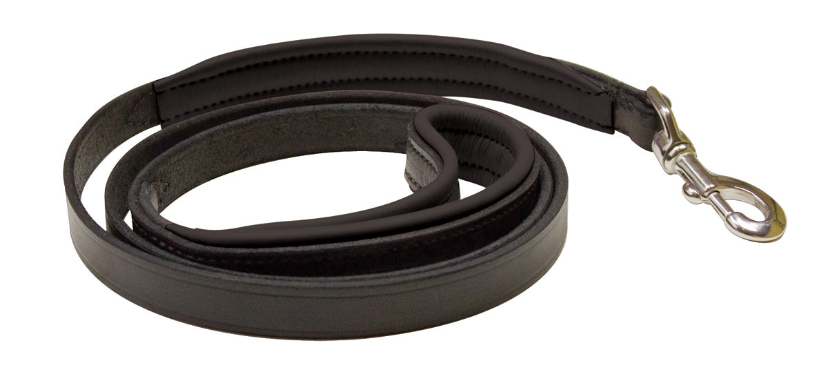 Perri's Leather Padded Leather Dog Leash -5'_1