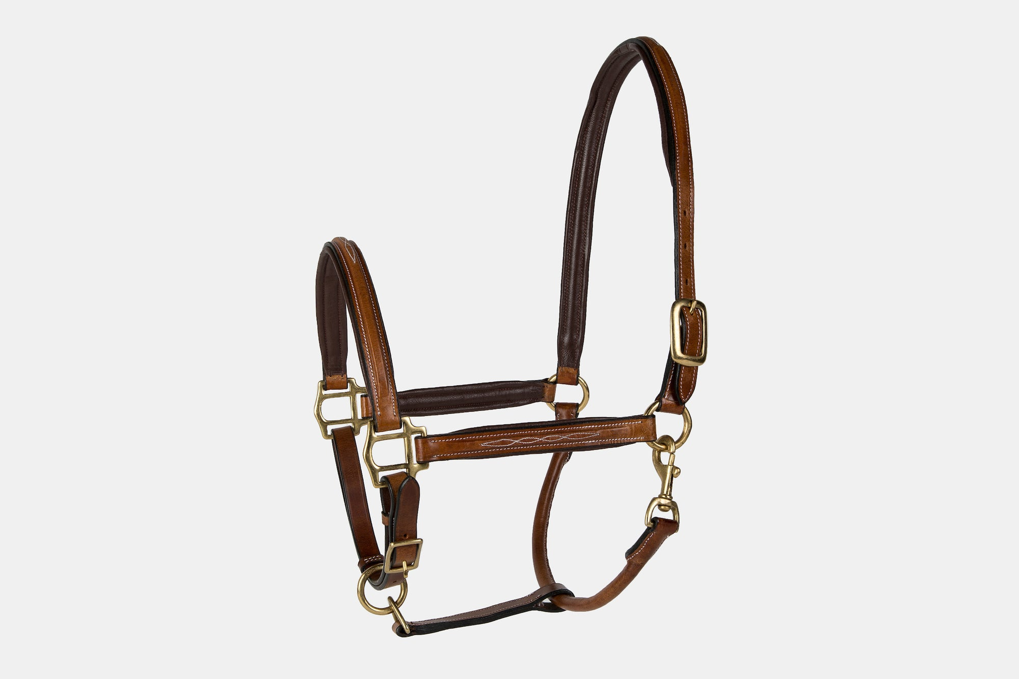 Lettia Padded Leather Halter W/ Fancy Stitching - Lettia - Breeches.com