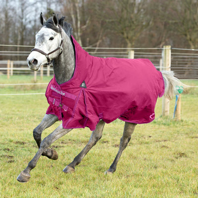 Horze Avalanche Heavy Weight Turnout Blanket 300g_657