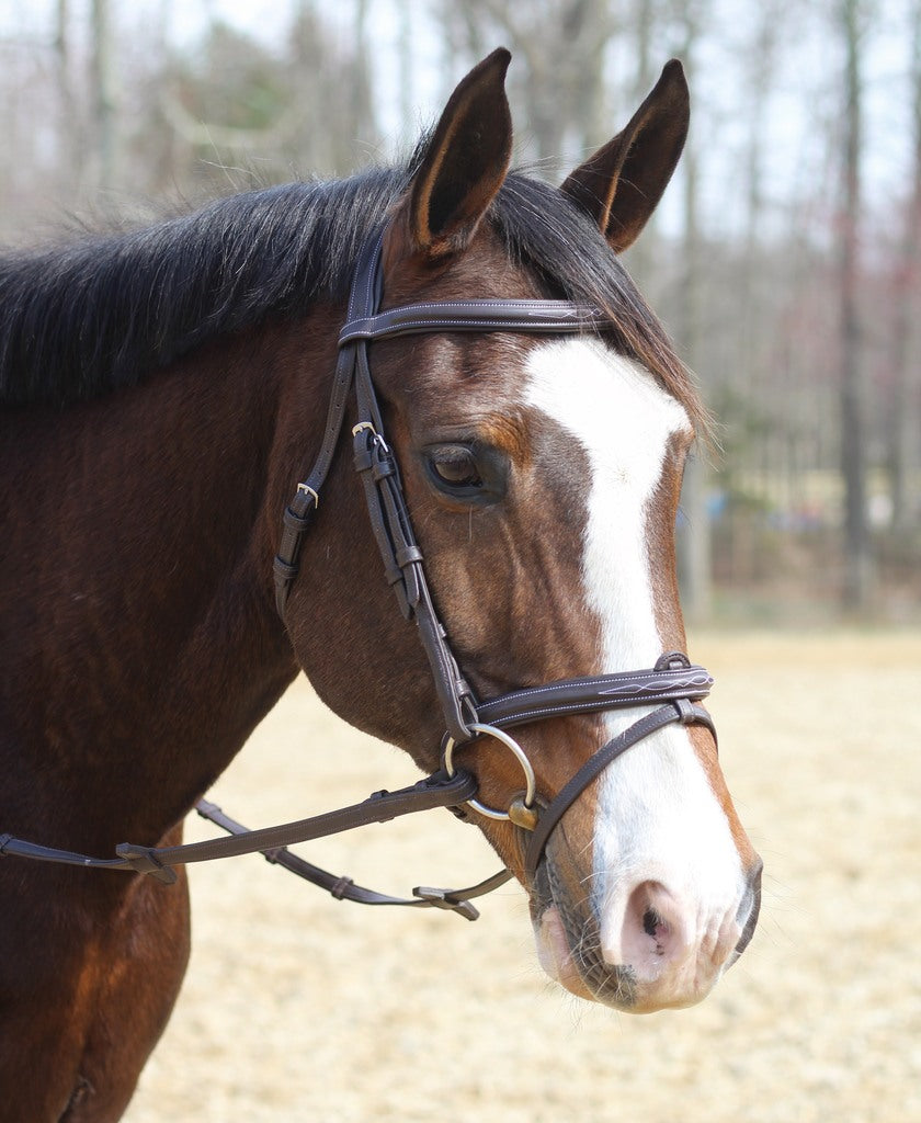 Henri de Rivel Kushy Bridle with Detachable Flash _1