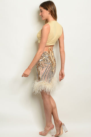 Nude Gold With Sequins Top & Skirt Set