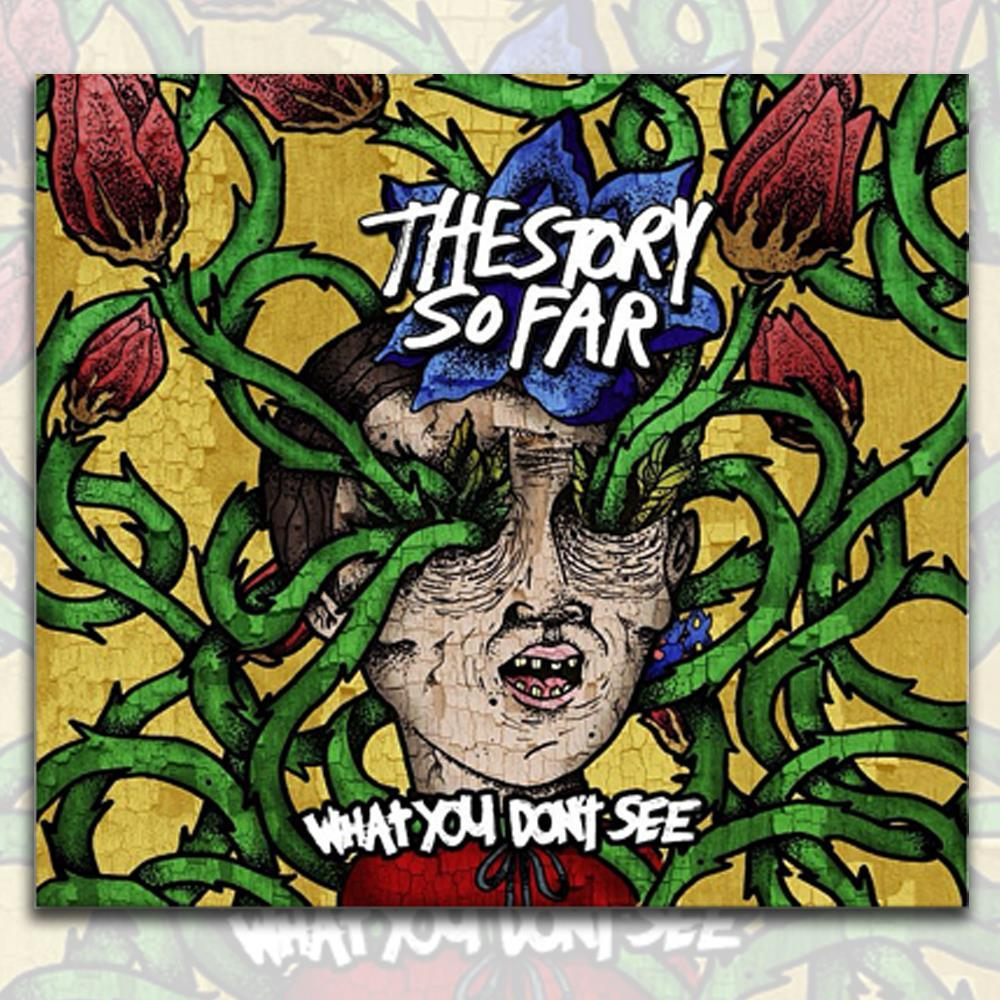 The Story So Far 'What You Don't See' CD