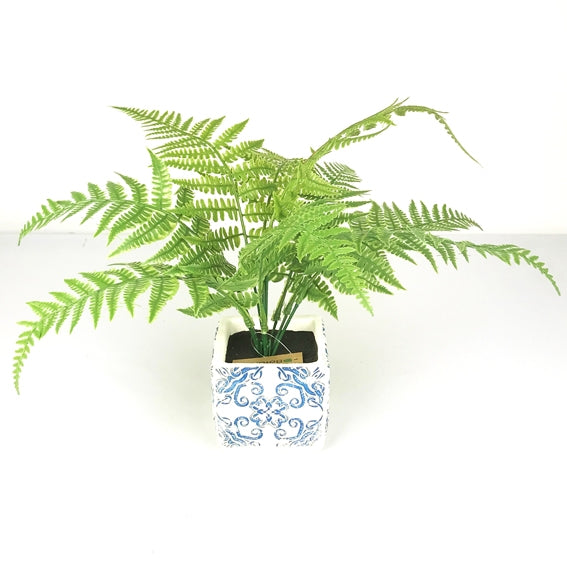 Botanica Fern Square Pot 40X12cm
