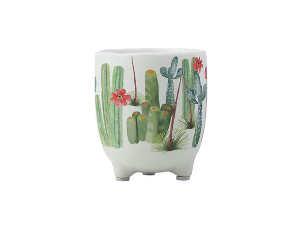 Maxwell & Williams Royal Botanic Garden - Arid Garden Planter Pot 12cm - Saguaro