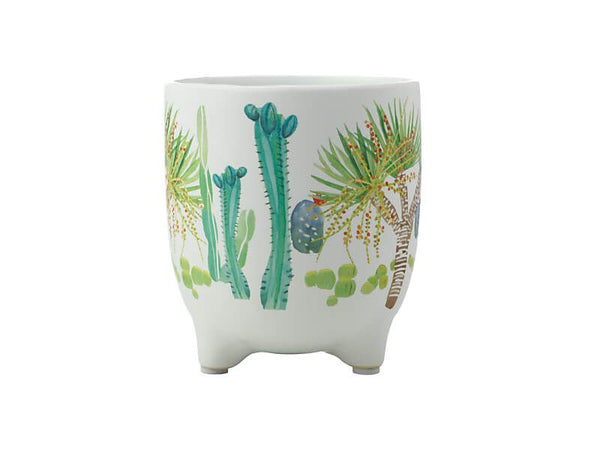 Maxwell & Williams Royal Botanic Garden - Arid Garden Planter Pot 14cm - Dracaena