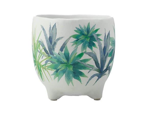 Maxwell & Williams Royal Botanic Garden - Arid Garden Planter Pot 16cm - Agave